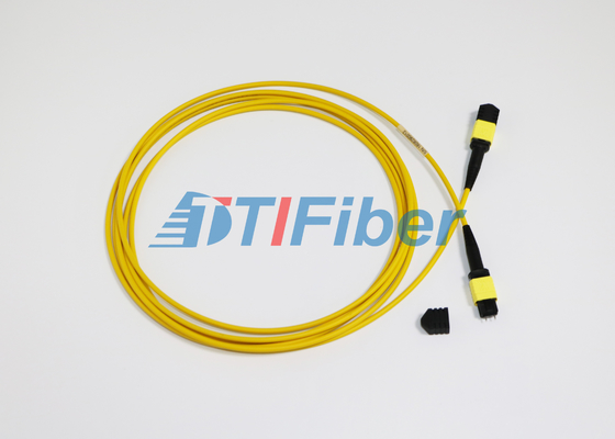 MPO - SC / LC Female And Male Type MTP / MPO Fiber Jumper Cables